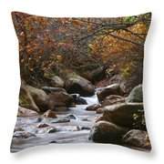 Autumns Flow Throw Pillow