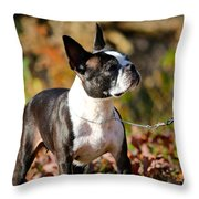Autumn's Glamour Throw Pillow