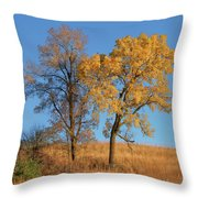 Autumn's Gold - No 1 Throw Pillow