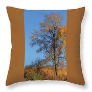 Autumn's Gold  - No 2 Throw Pillow