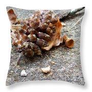 Autumn's Leftovers Throw Pillow
