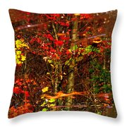 Autumns Looking Glass 2 Throw Pillow