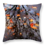 Autumns Looking Glass 3 Throw Pillow