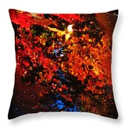 Autumns Looking Glass Throw Pillow