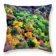Autumn's Palette Throw Pillow