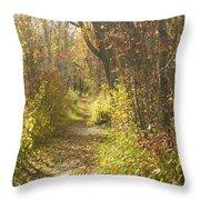 Autumns Path Throw Pillow