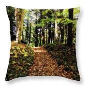 Autumn's Trail Throw Pillow