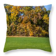 Autumn's Wall Throw Pillow