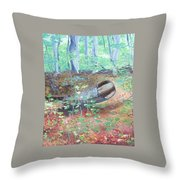 Avalon Park, 2016 Throw Pillow