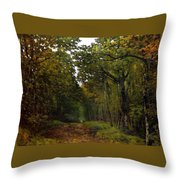 Avenue Of Chestnut Trees Throw Pillow