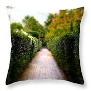 Avenue Of Dreams 2 Throw Pillow