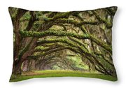 Avenue Of Oaks - Charleston Sc Plantation Live Oak Trees Forest Landscape Throw Pillow by Dave Allen