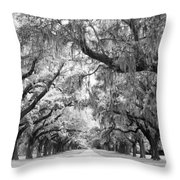 Avenue Of Oaks Charleston South Carolina Throw Pillow