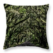Avenue Of Oaks Throw Pillow