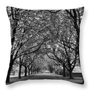 Avenue Of Trees Monochrome Throw Pillow