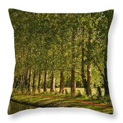 Avenue Of Trees On The Kennet And Avon Canal Throw Pillow