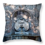 Avertine Hill Throw Pillow