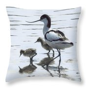 Avocet And Chicks Throw Pillow