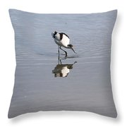 Avocet And Reflection Throw Pillow