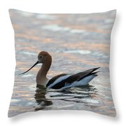 Avocet Sunset Throw Pillow