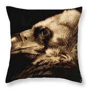 Avvoltoio Throw Pillow