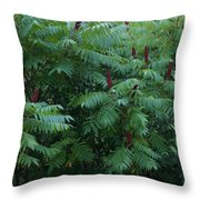 Awaiting The Sumac Throw Pillow
