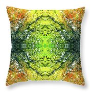 Awakened For Higher Perspective #1424 Throw Pillow
