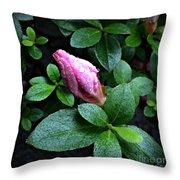 Awakening - Flower Bud In The Rain Throw Pillow