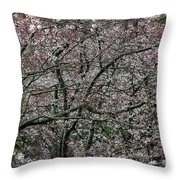 Awash In Cherry Blossoms Throw Pillow