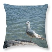Away From The Crowd Throw Pillow