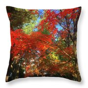 Awesometumn Throw Pillow