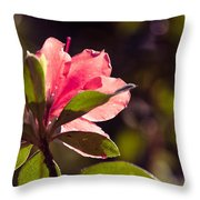 Azalea 2 Throw Pillow