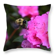 Azalea And Mr. Bumbles 05 Throw Pillow