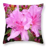 Azalea Garden Art Prints Pink Azaleas Flowers Baslee Troutman Throw Pillow