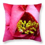 Azalea Macro Throw Pillow