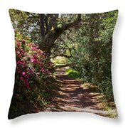 Azalea Path  Throw Pillow