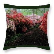 Azalea Pathway Throw Pillow