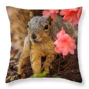 Azalea Squirrel Throw Pillow