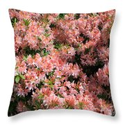 Azalea Wall Throw Pillow