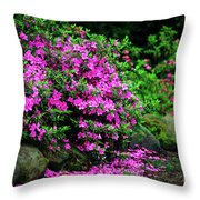 Azalea Waterfall At The Azalea Festival Throw Pillow
