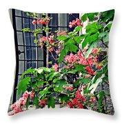 Azaleas At The Window   Throw Pillow