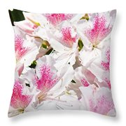 Azaleas Flowers Pink White Azalea Floral Baslee Troutman Throw Pillow