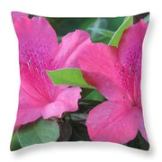 Azaleas II Throw Pillow