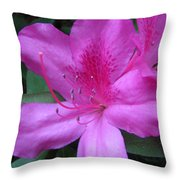 Azaleas IIi Throw Pillow