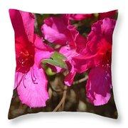 Azaleas In Magenta Throw Pillow
