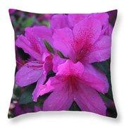 Azaleas In Springtime Throw Pillow