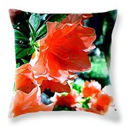 Azaleas In The Spring Throw Pillow