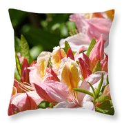 Azaleas Pink Orange Yellow Azalea Flowers 6 Summer Flowers Art Prints Baslee Troutman Throw Pillow