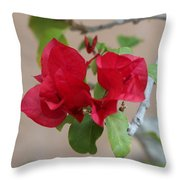 Aztec Bougainvillea  Throw Pillow