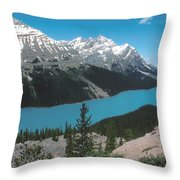 Azure Alberta Throw Pillow